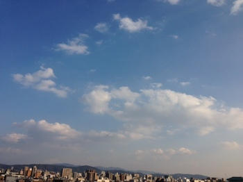 写真 1 のコピー 3.JPG